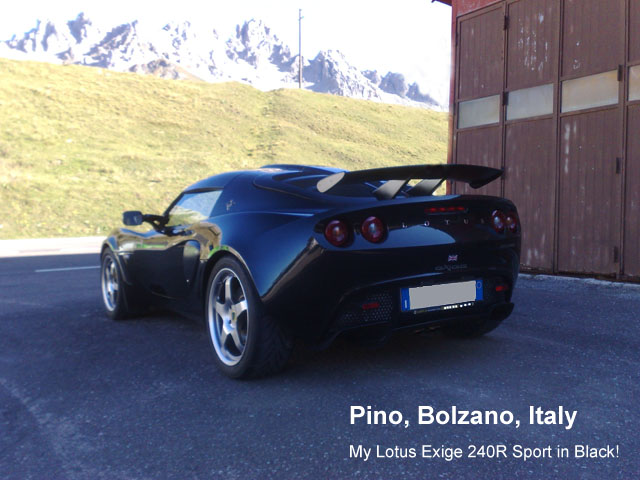 exige owner pino